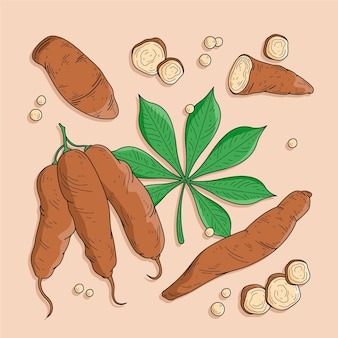 Нарисованная рукой иллюстрация тапиоки
