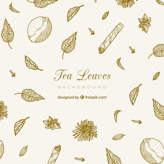 Рисованные чайные листья фон