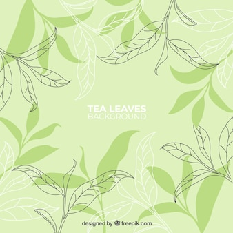 Hand drawn tea leaves background
