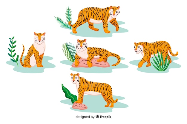 Hand drawn tiger with leaves collection