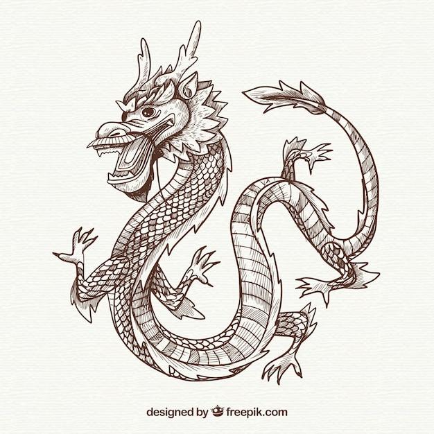 Dragon Sketch Art