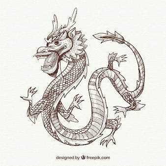 Hand drawn traditional chinese dragon