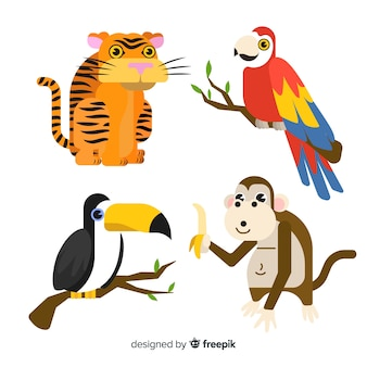Hand drawn tropical animal collection
