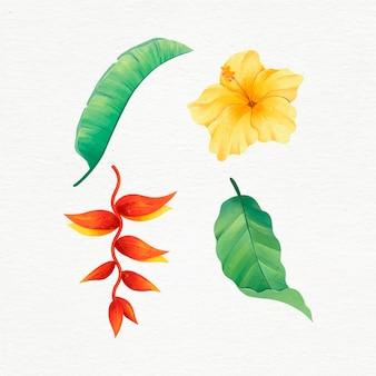 手描きの熱帯の花と葉のセット