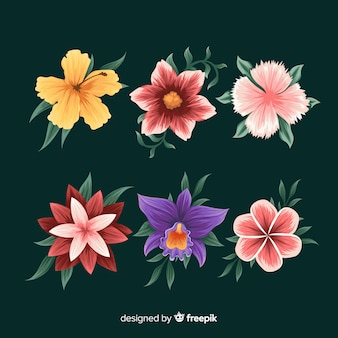 Hand drawn tropical flower pack
