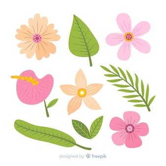 Pacchetto di fiori e foglie tropicali disegnati a mano