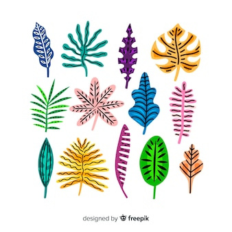 Hand drawn tropical leaves collection
