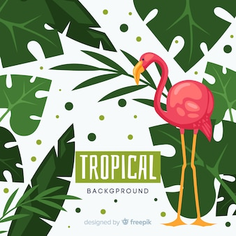 Hand drawn tropical plants and bird background
