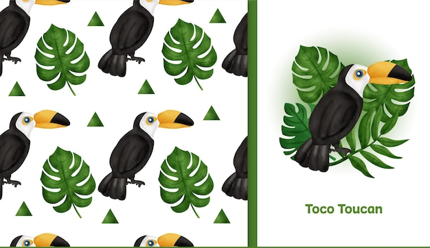 トコオオハシのシームレスなパターンで手描きの熱帯