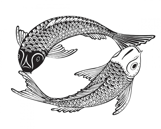Hand drawn two koi fishes (japanese carp)