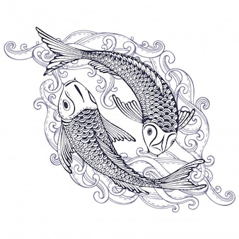 19a45b010 Hand drawn of two koi fishes japanese