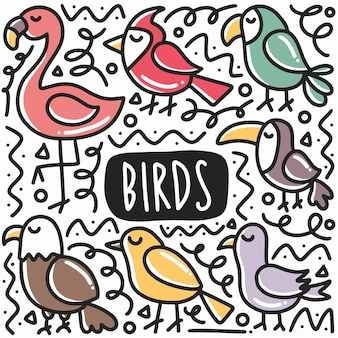 Hand drawn type of bird doodle set with icons and design elements