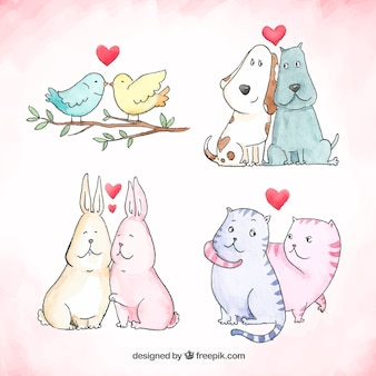 Hand drawn valentines day animal couple collection