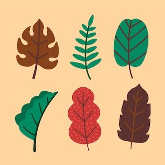 Vari tipi di foglie disegnati a mano