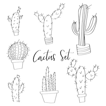 Hand drawn vector cactus set doodles