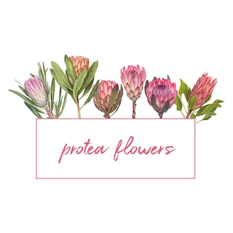 Hand drawn vector flower illustration
