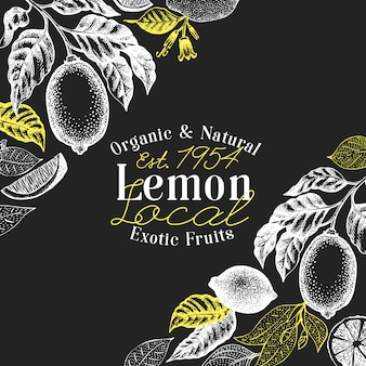 Hand drawn vector fruit illustration on chalk board. lemon fruit and branch engraved style retro citrus.