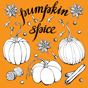 Hand drawn vector illustration with colorful  pumpkins and lettering pumpkin spice
