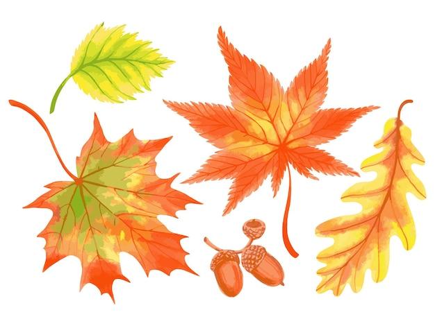 Ручной обращается вектор акварель осенних листьев осенняя красочная листва