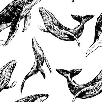 Ручной обращается вектор бесшовные модели красивых китов. обои эскизы животных океана. ретро графический фон. абстрактный монохромный дизайн для печати, упаковки, декора, текстиля, ткани.