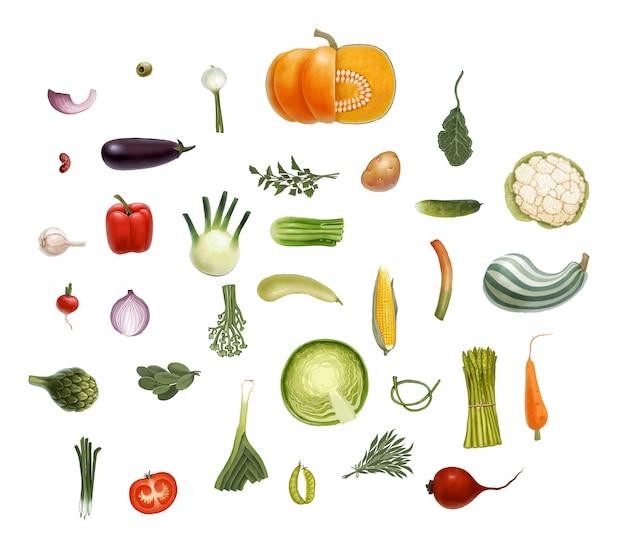 Нарисованные от руки векторные овощи