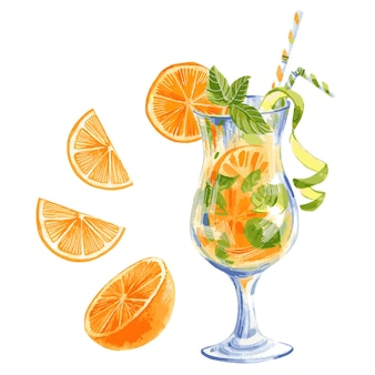 Hand drawn vector watercolor illustration  of summer lemonade cocktail with orange lemon and mint
