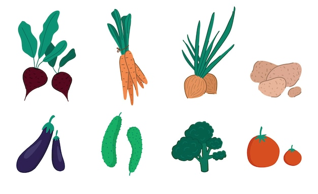 손으로 그린 야채 세트입니다. 만화 스타일 벡터 일러스트 레이 션 흰색 배경에 고립입니다.