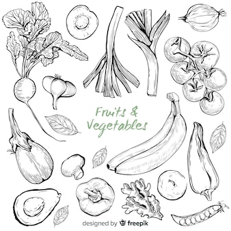 손으로 그린 야채와 과일