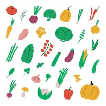 Коллекция рисованной овощи. набор овощей.