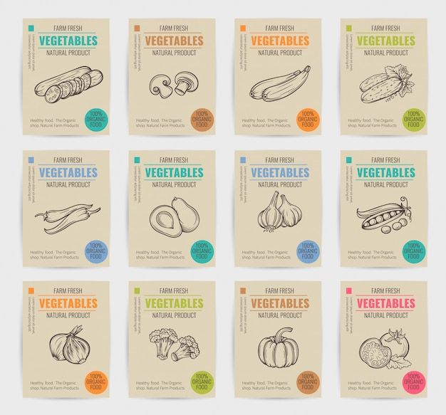 Hand drawn vegetables posters set