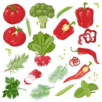 손으로 그린 야채. 빨간색과 초록색 ..