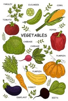 Рисованной овощи овощи питание каракули органическое веганское питание здоровый образ жизни вегетарианство