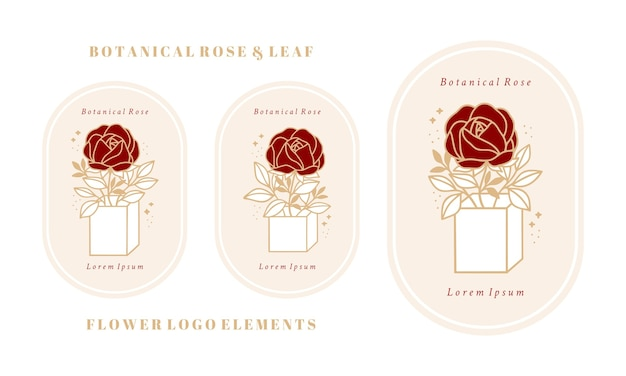 Hand drawn vintage botanical rose peony flower logo template box package and feminine beauty brand element collection