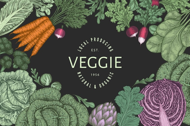 Hand drawn vintage color vegetables . organic fresh food  banner template. retro vegetable background. traditional botanical illustrations.