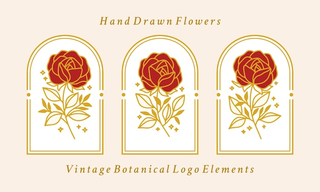 Hand drawn vintage gold botanical rose flower logo element collection
