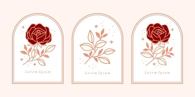 Нарисованный рукой винтажный шаблон логотипа цветка розовой ботанической розы и коллекция элементов бренда женской красоты