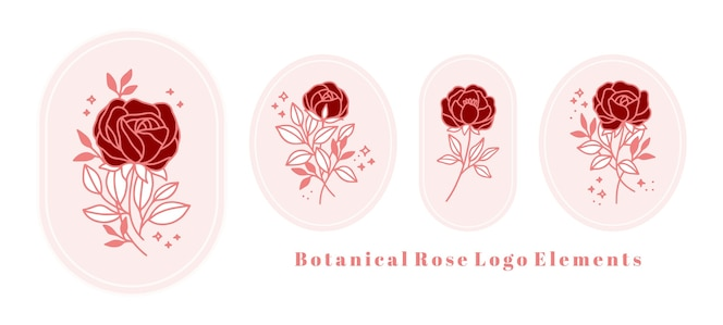 hand drawn vintage pink botanical rose flower logo template and feminine beauty brand element collection