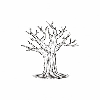 Hand drawn vintage tree branch