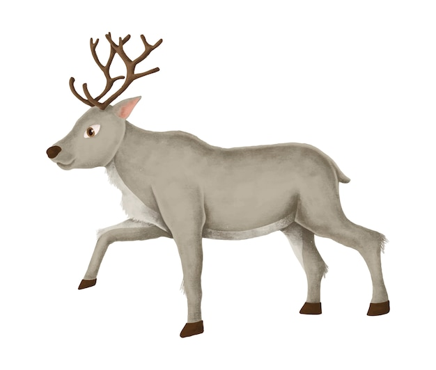 Hand-drawn walking reindeer