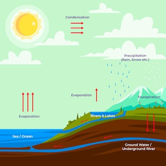 Hand drawn water cycle information