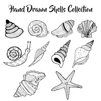 Hand drawn under water shells collection