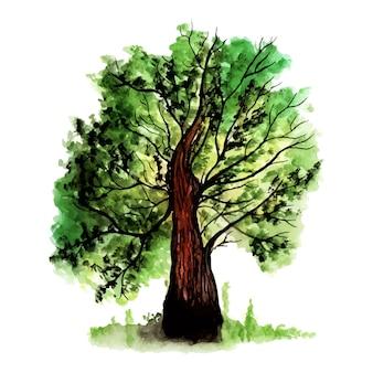 손으로 그린 수채화 예술 나무