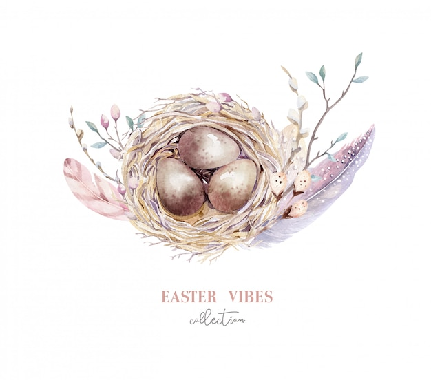 手描きの卵、イースター春のデザインの水彩画の鳥の巣