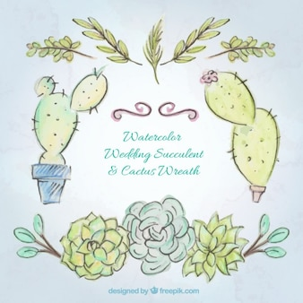 Hand drawn watercolor cactus and leaves