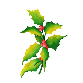 Hand drawn watercolor christmas cherry & leafs