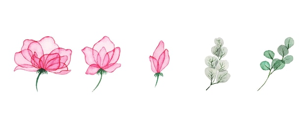 Hand drawn watercolor floral art