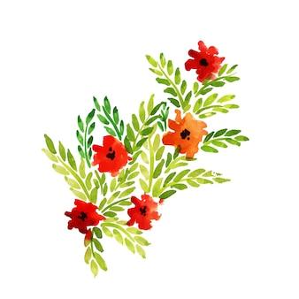 Fiori e foglie floreali dell'acquerello disegnato a mano