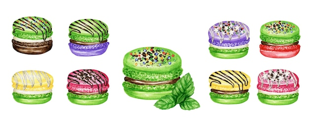 Hand drawn watercolor illustration od french macaroon cakes set.