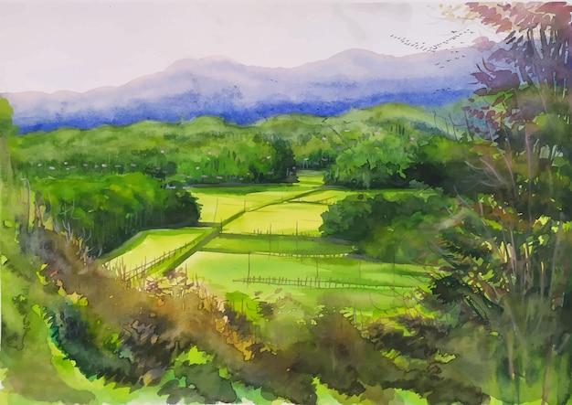 手描きの水彩画の自然の風景密な丘陵の森の中の広いフィールドは美しい光景のイラストです