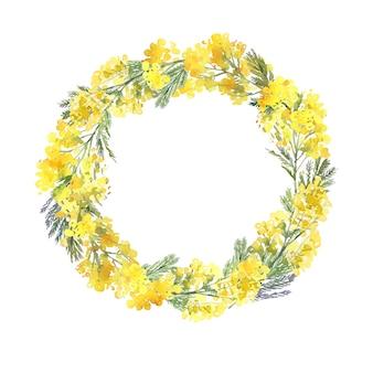 黄色のミモザの枝の手描きの水彩画の花輪。春の花と繊細な花の丸いフレーム。